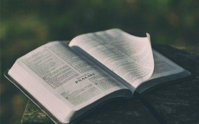 Не вірте чуткам: мормони дійсно цінують Біблію