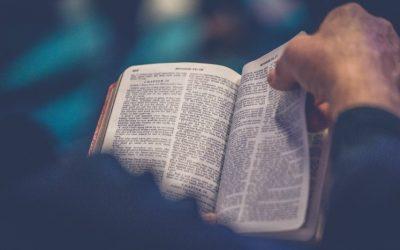 Я ЗАГУГЛИВ «ЯК Я МОЖУ ДІЗНАТИСЯ, ЩО БІБЛІЯ ІСТИННА», І РЕЗУЛЬТАТИ РАЗОЧАРУВАЛИ МЕНЕ