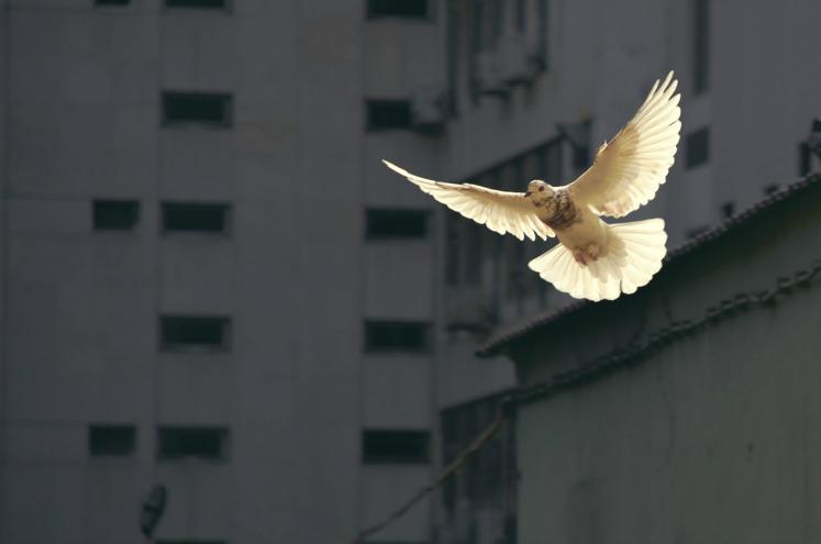 ЩО МИ МАЄМО НА УВАЗІ, КОЛИ КАЖЕМО «Я ВІДЧУВАЮ ДУХ»?